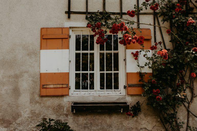 Rot-weiße Fensterläden mit Rosen im Vordergrund